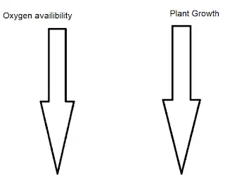 Best way to grow plants Agriculture Novel